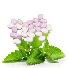Stevia mentas caramelos de menta caramelos de menta
