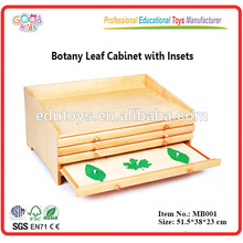 Montessori material botany leaf cabinet with drawer