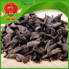 Venta directa de la fábrica Seta hongo seco negro
