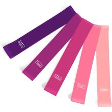 Benutzerdefinierte Latex Stretch Resistance Loop Bands Set