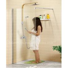 Европейский дизайн из нержавеющей стали 8 мм стеклянная душевая комната (LTS-021-1)