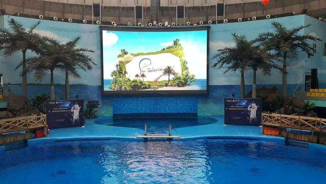 Swimming Pool Screen