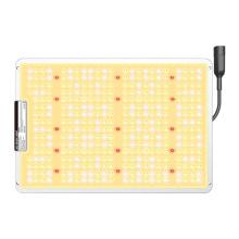 Panneau lumineux de croissance à LED étanche intérieur 150W