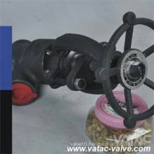 Cast or Forged Stainless Steel Y Type or Y Globe Valve with Bw, Sw or Thread NPT & Bsp