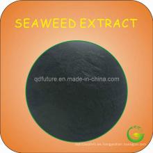 Extracto de algas marinas en polvo