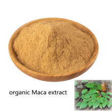 Comprar online ingredientes activos polvo de extracto de Maca orgánico