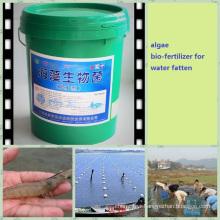 seaweed fatten water fertilizer for aquaculture