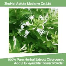 100% Pure Herbal Extract Chlorogenic Acid /Honeysuckle Flower Powder