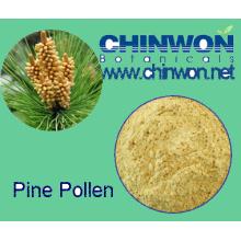 78. Gesunde Nahrungsmittelunterbrechung Powder Pine Pollen