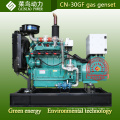 4 Zylinder 30kw Erdgas Biogas-Generator-Set