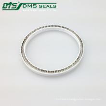hydraulic OEM Steel Spring Energized PTFE Valve Seal