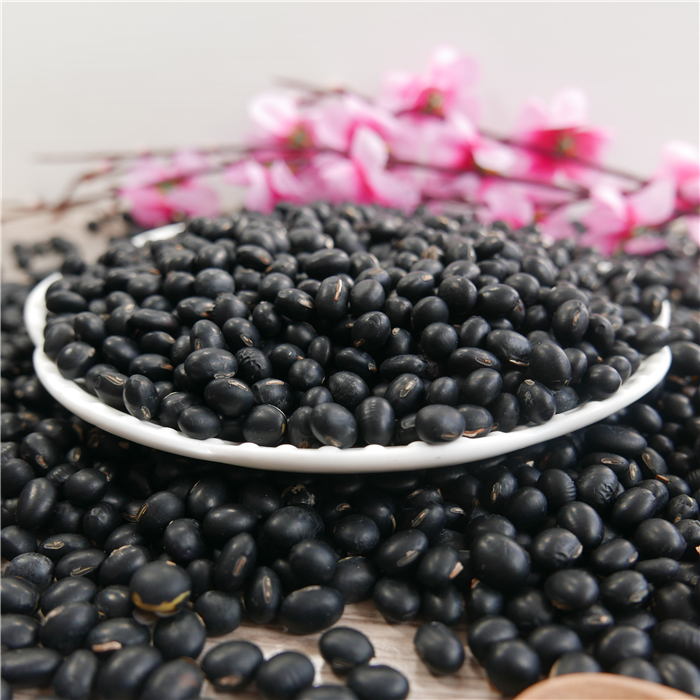 Big Black Beans 6,5mm Black Turtkle Bean