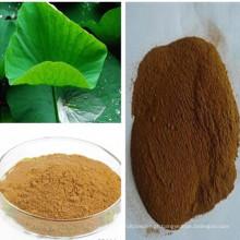Perda de peso Nuciferina 2% extrato de folha de lótus