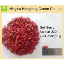 Suministro directo de fábrica Pure Natural Goji Berry