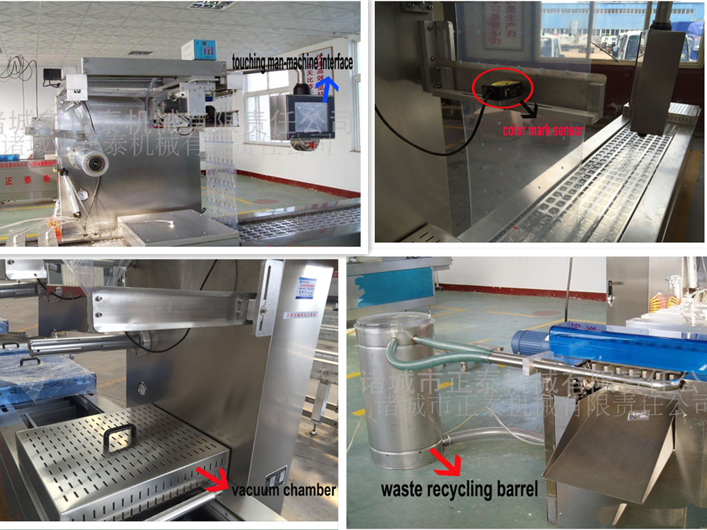 Food Pouch Vacuum Package Machine for Fish