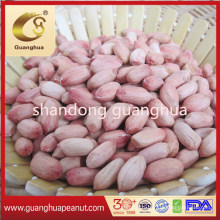 New Crop Peanut Kernels with High Protein