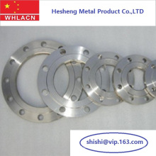 Stainless Steel Casting Pipe Fittings Flange (LOST WAX CASTING)