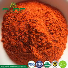 Extracto de Goji Berry Powder orgánico en Goji