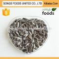 Sunflwoer Seeds Factory New Crop