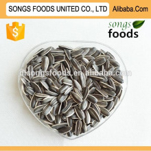 Sunflwoer Seeds Factory Nova Colheita
