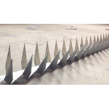Security and Beautity Wall Spike