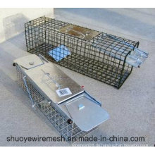 Humane Kaninchen-Ratten-Nerz-Grau-Eichhörnchen-kleine Waschbär-Opossum-Katze, die lebende Tierkäfig-Falle faltet