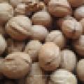 Natural Naturais orgânicas de pele fina em Shell