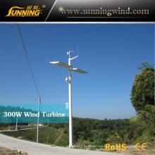 Residential Wind Generator 300W Wind Turbine Monitoring Use