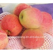 Pomme de gala fraîche chinoise
