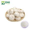 High Quality Extracts Manufactory Organic Bulk Garlic Powder