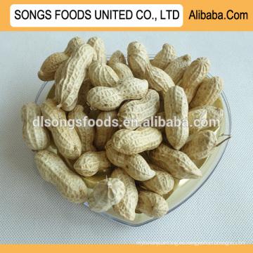 Importar cacahuetes a granel a la venta
