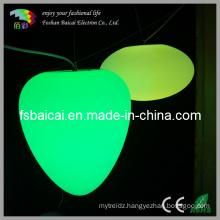Good Price LED Decoration Ceiling Lights (BCD-441L)