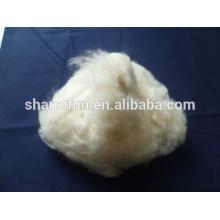 Fibra de caxemira de marfim 100% pura mongol