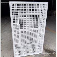 The reinforced chicken transport cage poultry plastic case