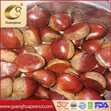 New Crop Fresh Chinese Chestnut 30-40