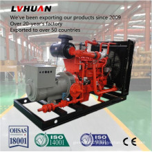 Low Comsumption 50Hz/60Hz Cummins 200kw Natural Gas Generator with High Quality