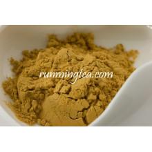 Bulk Pack Extracto de té verde natural en polvo