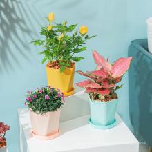 Garden suppliers indoor outdoor small middle size lightweight irregular plastic plant pots flower pots in bulk