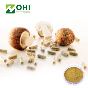 Chiết xuất nấm Agaricus Blazei Murill