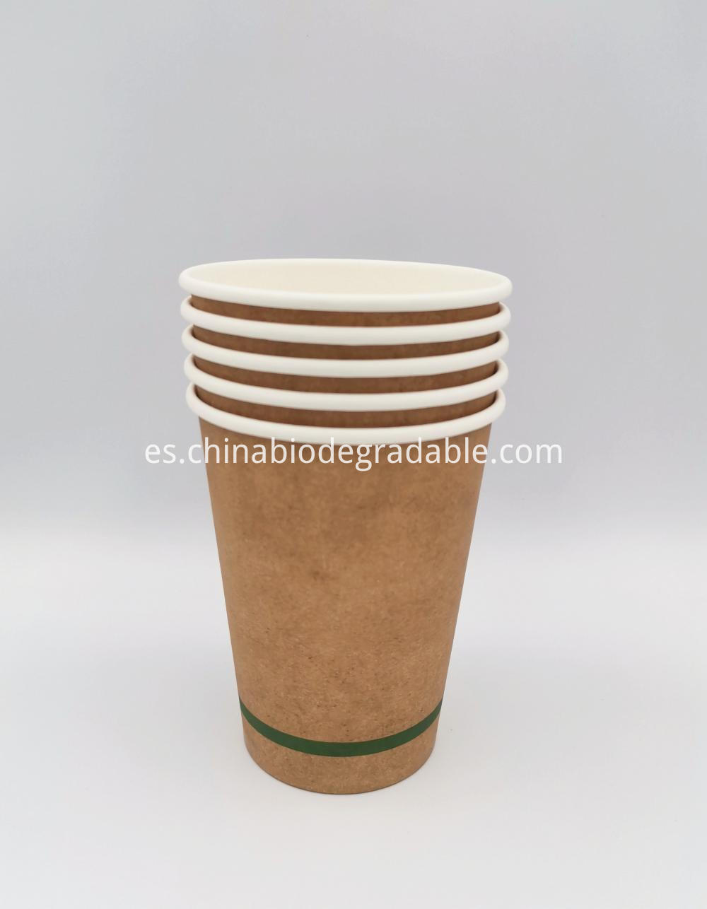 Compostable Disposable Coffee Paper Cup