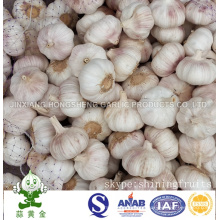 Size: 6.0cm Normal White Garlic From China