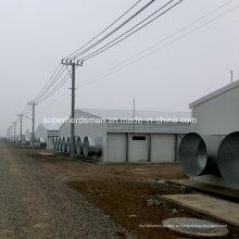 Construção da exploração agrícola de galinha da construção de aço com equipamento de produção