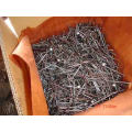 Hot Dipped Galvanized Round Common Nail