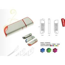 USB Flash Drive w/Matte Silver Finish (01D20001)