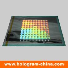 Пользовательские матричный лазерный голографический безопасности Мастер