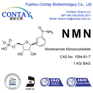 Contay NMN Supplement US HK Beta-Nicotinamide