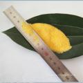 npk 20-20-20 gelbes Pulver 100% wasserlöslicher Dünger