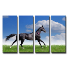 New Design Decorative Canvas Prints for Home or Office