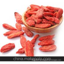 Chinesische Wolfberry / Bio Wolfberry aus China