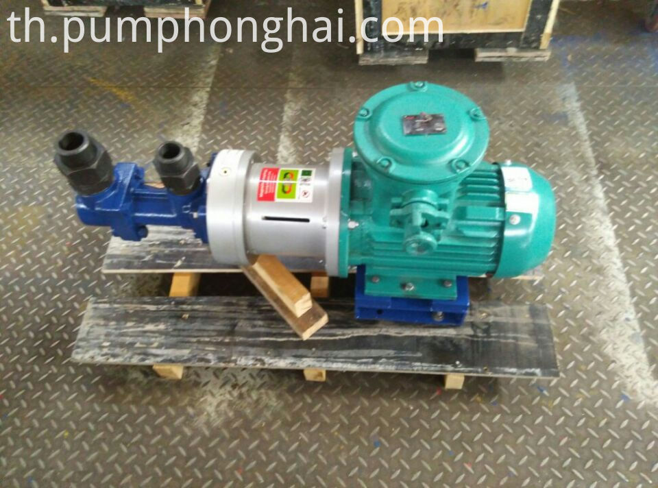 magnetic oil pump